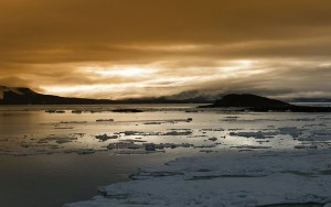 Arctic-sunrise(1)